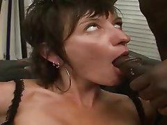 Interracial blowjob tube
